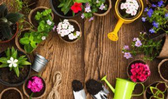 Najlepszy sprzęt do wiosennych prac ogrodowych