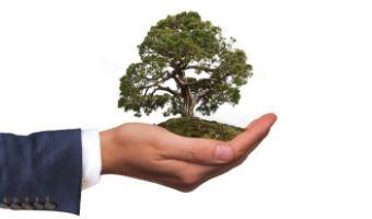 Ekologiczna wyprawka dla dziecka – co wybraæ?
