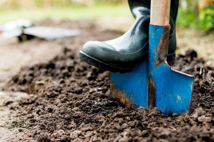 wiosna-w-pelnej-krasie-–-przygotowujemy-narzedzia-na-sezon-ogrodniczy3.jpg